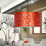 Contemporary Bird Led Personality Droplight Light Lamp Single Head Contracted Creative
