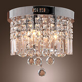 Luxuriant Flush Mount Lamps 100 Crystal